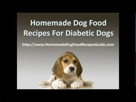 food for diabetic dogs food recipes for diabetic dogs popscreen