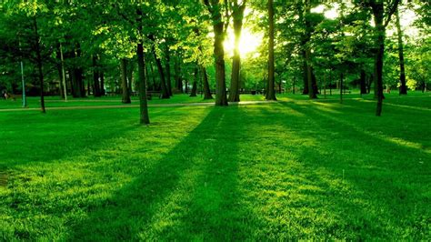 Nature Hd by Awesome Nature Wallpapers 1080p Natures Wallpapers