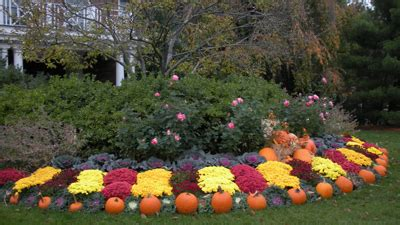fall front yard landscaping services in bergen county nj