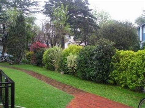 imagenes de jardines hermosos y pequeños insectos jardiner 237 a