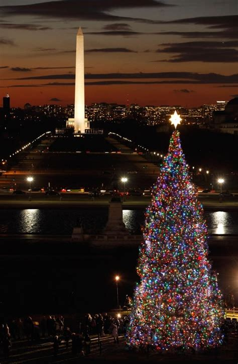 dc christmas trees gli alberi di natale pi 217 belli mondo washington dc usa monumento a george washington