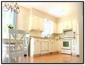 Home Depot Kitchen Furniture 18 Home Depot Kitchen Cupboards Designs Inset Kitchen Cabinets Home Depot Home Design Ideas