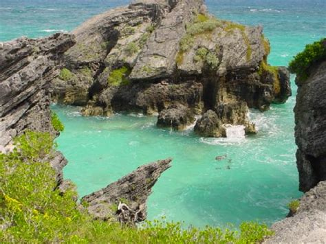 Bermuda Address Finder Jobson S Cove Warwick Parish All You Need To Before You Go With Photos
