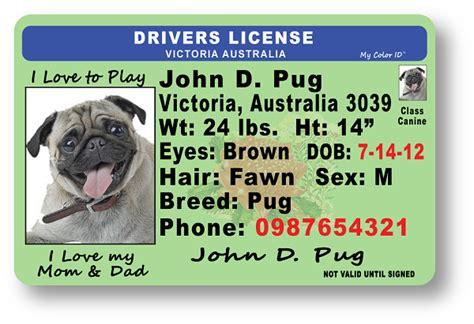australian id card template drivers license vic au saigodstan1988