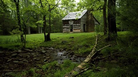 Forest Mountain Cabins by Cabin In The Forest Wallpaper 183 Ibackgroundwallpaper