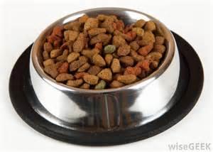 is it healthy to feed my dog vegetarian dog food