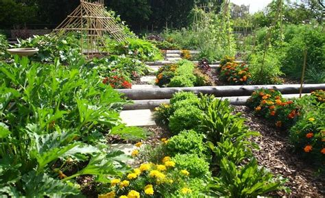 how to prepare a vegetable garden how to prepare a vegetable garden for all 4