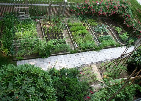 Vegetable Garden Grow Your Own Healthy Vegetables Growing Your Own Vegetable Garden