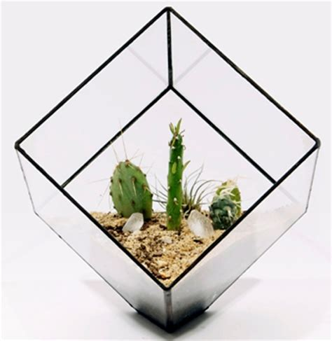Glass Planters by Glass Cube Planters From Score Solder