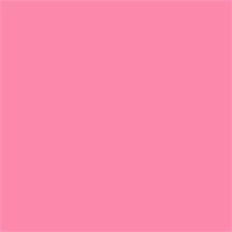blush pink color search pink blush and colors
