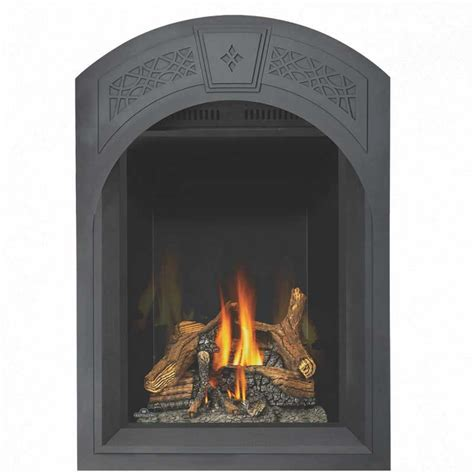 Gas Fireplace Starting by Napoleon Gd82nt Paesb Park Avenue Top Vent Gas