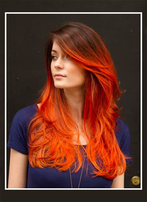 ecaille hair styles ecaille hair color 101 all about this new trend