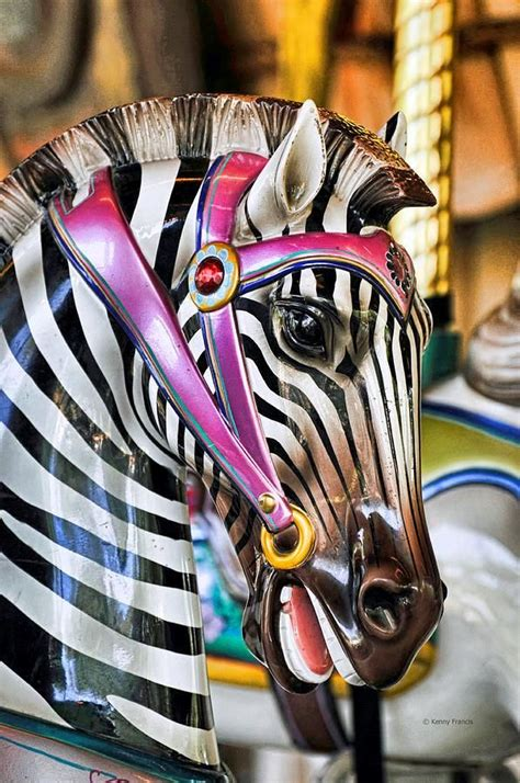 zebra decke 17 best images about i carousels on