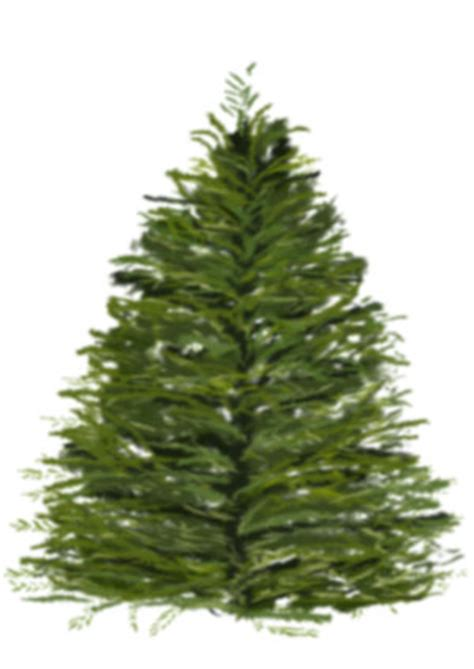 christmas tree using photoshop