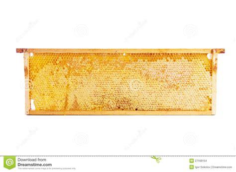 honeycomb pattern frame frame with honeycomb full of honey stock images image