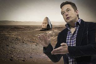 elon musk dead stale bread and soggy crisps how to bring old food back