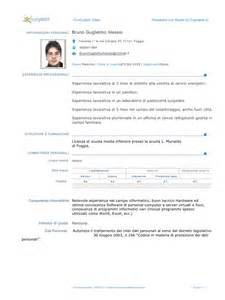 Curriculum Vitae Plural by Cv Curriculum Vitae Plural Vitae Resume Template Sample