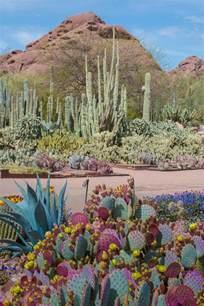 desert botanical garden offers wide variety of classes for