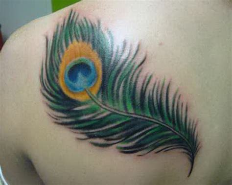 peacock feather tattoo with peacock feather on right shoulder