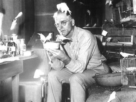 themes in birdman film birdman of alcatraz 1962 john frankenheimer synopsis
