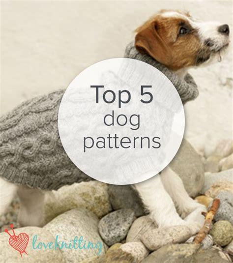 knitting pattern dog sweater large best 25 large dog sweaters ideas on pinterest dog
