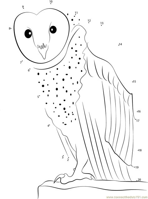 owl dot to dot printable owl look at me dot to dot printable worksheet connect