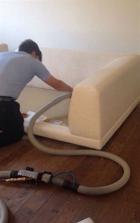 professional couch cleaning service professional upholstery cleaning service