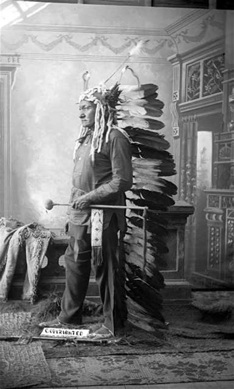 toro seduto capo indiano la nazione americana gli indiani d america maxword pages
