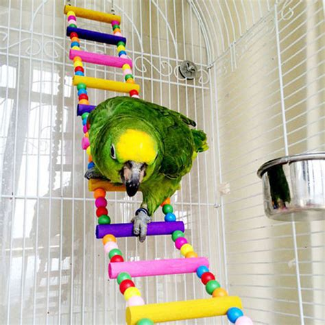 macaw swing pet bird toys wood ladder climb parrot macaw cage swing