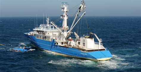 small boat v ship sapmer fishing vessels and exceptional logistics