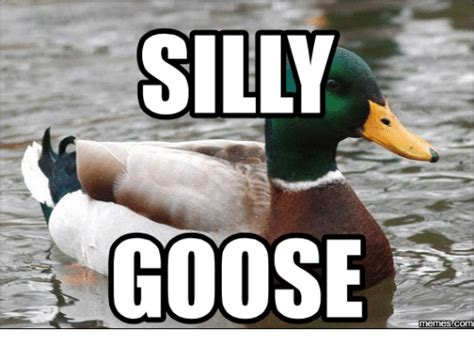 Silly Goose Meme - search ocean man memes on me me