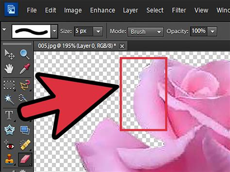 remove background  photoshop elements