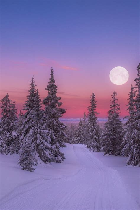 17 Best Images About Winter - 17 best ideas about winter on beautiful
