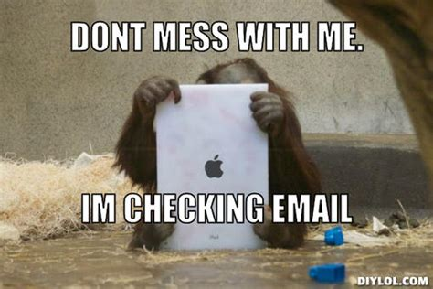 Meme Email - funny monkey pictures to share on facebook wallpaper