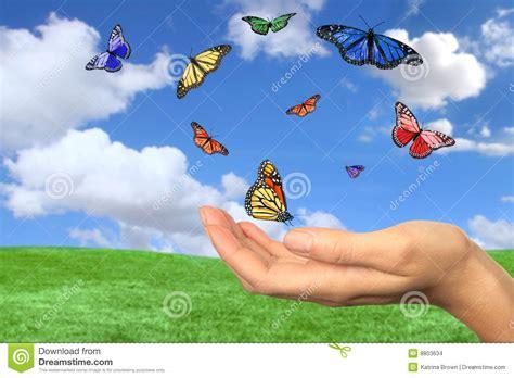 imagenes de mariposas que vuelan mariposas bonitas que vuelan libremente imagenes de