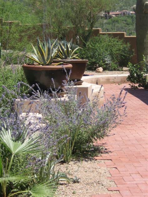 Landscape Ideas Desert Southwest Desert Retreat Southwestern Landscape By