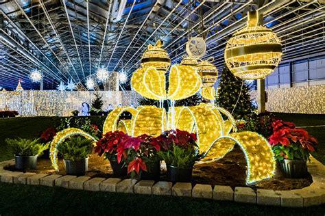 glow gardens halifax exhibition centre  prospect