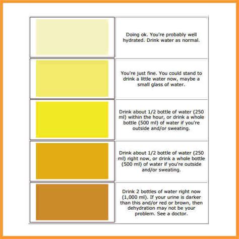 color meaning chart urine color chart meaning letter format mail