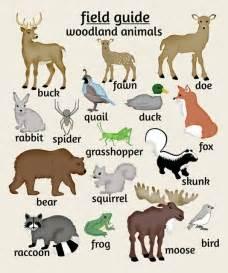nursery art woodland animals