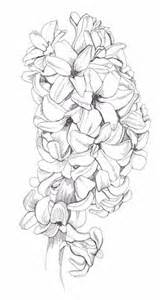 Galerry lily flower coloring pages