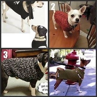 Imbb 17 Tastetea Roundup Part Viii by 17 Best Images About Crochet Pug Clothes On