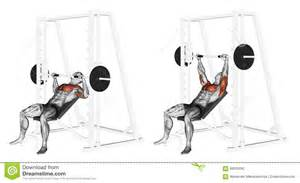 smith machine chest press exercising incline smith machine bench press stock