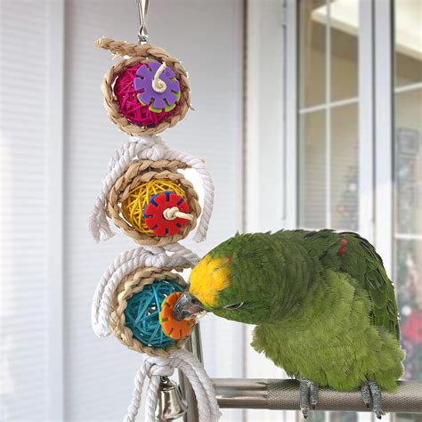 Bird Toys Toys Quality Pet Toys parrot supplies canada wow