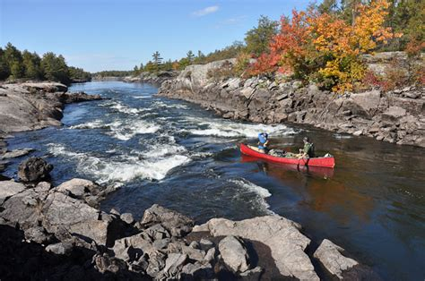 canoes in french canoe canada the french river frontier bushcraft expedition