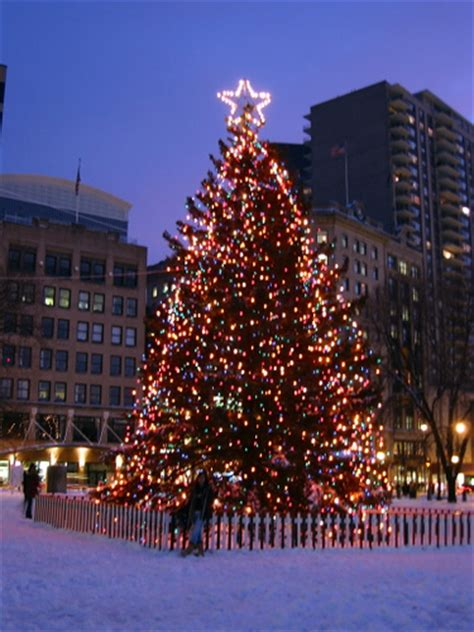 halifax christmas tree we believe this is the tree that