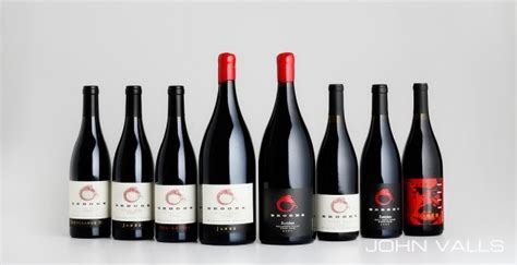 chagne bottle wine bottles 100 images easy and inexpensive wine
