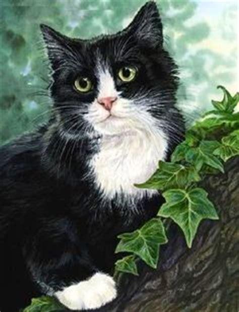 Boneka Kucing Cat 3 Colour Big Eye 9 Tuxedo Kitten Cat Robin Birds Nest Garden Flowers Original