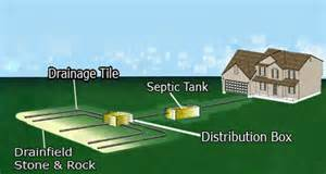 septic tank system distribution box