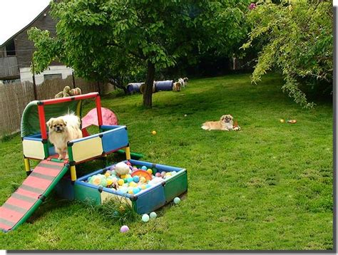 dog backyard play equipment backyard dog playground ideas 187 design and ideas