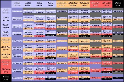 color genetics human hair color genetics chart search genetics